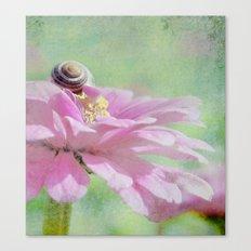 Land Snail on Petals  Canvas Print