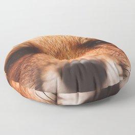 Red fox 2 Floor Pillow