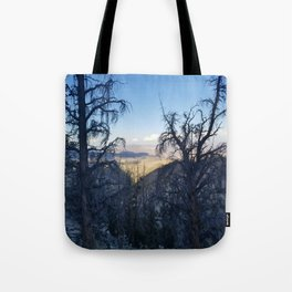 Ancient Bristlecone Pine Forest #1 Tote Bag