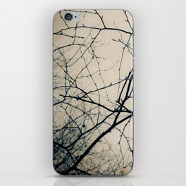 Beneath Bare Branches iPhone Skin