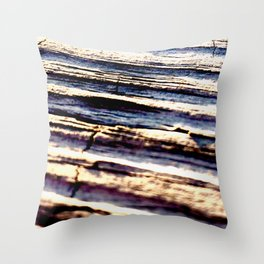 w a t e r s i d e Throw Pillow
