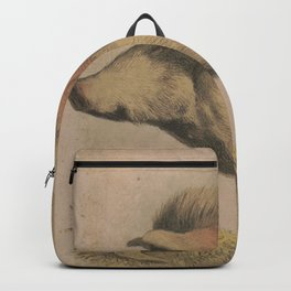 Vintage Illustration of a Domesticated Pig (1874) Backpack