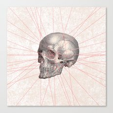 Abstract Gray Vintage Skull Modern Pink Stripes Canvas Print