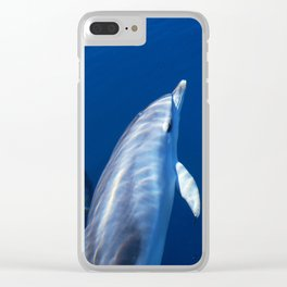 Playful and friendly dolphins Clear iPhone Case