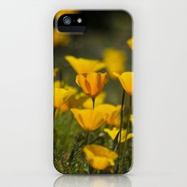 Springtime Poppies iPhone Case