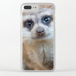 Meerkat Clear iPhone Case