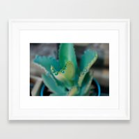 plants Framed Art Prints featuring Plants by Belen Glaus