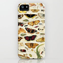 "Jan van Kessel the Elder ""An Extensive Study of Butterflies, Insects and Seashells"" iPhone Case"