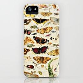 "Jan van Kessel the Elder ""An Extensive Study of Butterflies, Insects and Seashells"" iPhone Case"