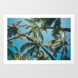 Kuau Palms Paia Maui Hawaii Art Print