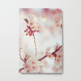 Sweet spring Bloom | Nature pink flowers photography Metal Print