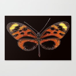 Untitled Butterfly 2 Canvas Print