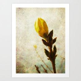 Yellow Bud Art Print