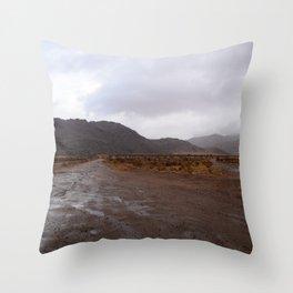 After the Desert Rain Throw Pillow