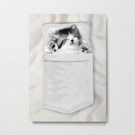 Kitten Nap Pocket Metal Print
