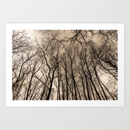 Cursed forest Art Print