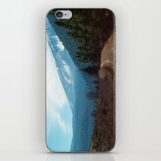 they're coming down iPhone & iPod Skin