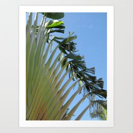 Tropical Foliage Art Print