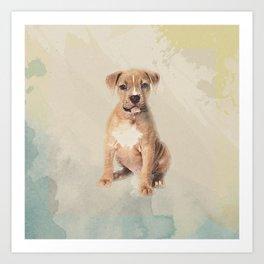 American staffordshire terrier puppy Sketch Paint Art Print