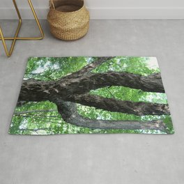 Tree Trunk and Branches Rug