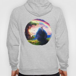 Ori and the Blind Forest Hoody
