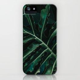 Leaf art iPhone Case