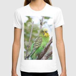 Sweet BUDGIE T-shirt