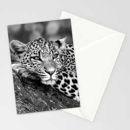 Lounging Leopard Black And White Stationery Cards