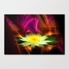 Wellness Water Lily 2 Canvas Print