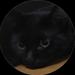 catsuper+