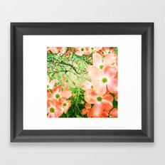 dogwood flowers Framed Art Print
