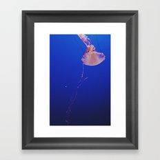 jellyfish ii Framed Art Print