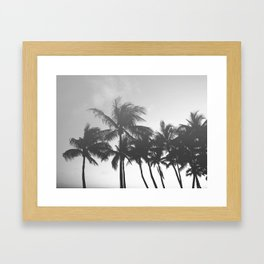 Key West / Black and White Tropical Palms Framed Art Print