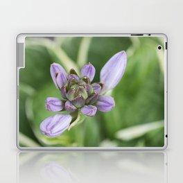 Lavender Velvet Slippers Laptop & iPad Skin