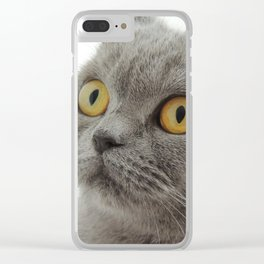 You have my food!? Clear iPhone Case