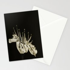 On Its Own Stationery Cards