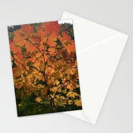 Autumn Shade Stationery Cards