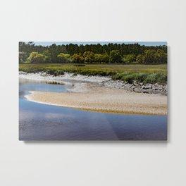 Harris Neck, Georgia Metal Print