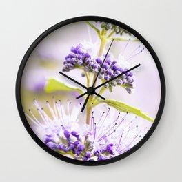 Russian Sage Wall Clock