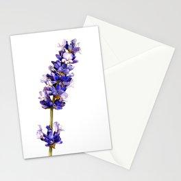 Mediterranean Lavender on White Stationery Cards