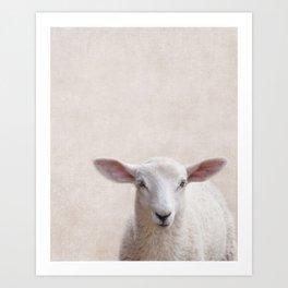 Lamb Portrait Art Print