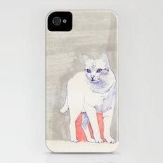 Cat 01 iPhone (4, 4s) Slim Case