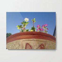 Sky and Flowers Metal Print