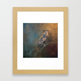 One Eye On You Framed Art Print