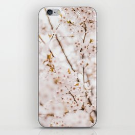 Honey bee blossom iPhone Skin