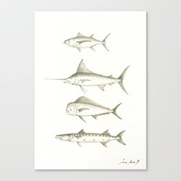 Gamefish saltwater Canvas Print