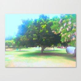 The Raanana Park 7 Canvas Print