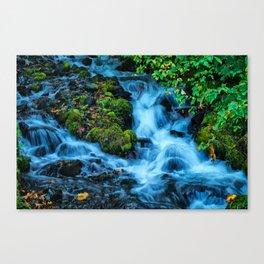 Wahkeena Falls  Canvas Print