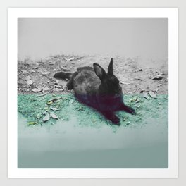 Blue Rabbit Art Print