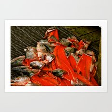 Fish heads Art Print